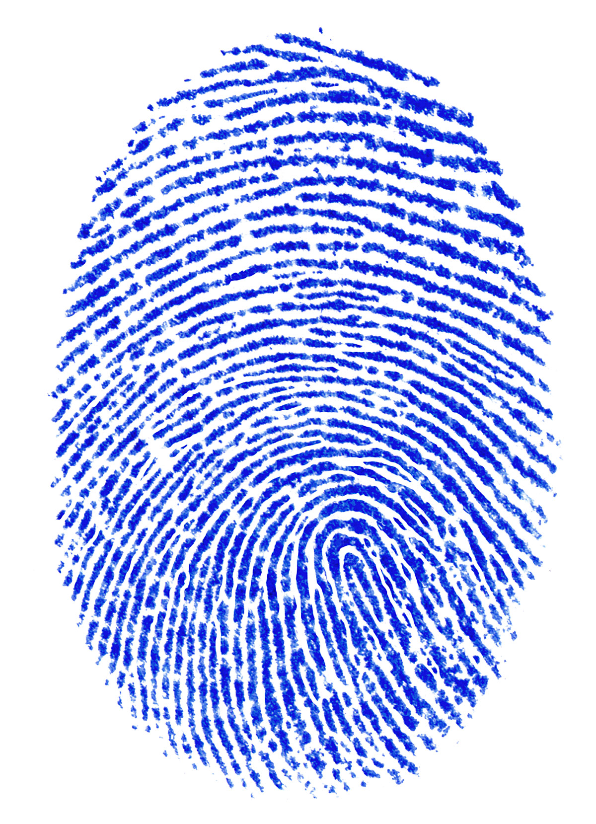Confirmed: Samsung Galaxy S5 To Feature Fingerprint ...